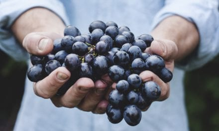 Chemical Compounds in Foods Can Inhibit a Key SARS-CoV-2 Enzyme